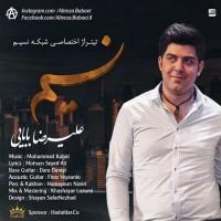 Alireza-Babaei-Nasim