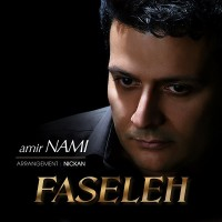 Amir-Nami-Faseleh