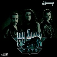 Black-Cats-Khoshgeleh