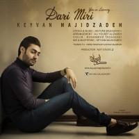 Keyvan-Majidzadeh-Dari-Miri