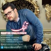 Mahyar-Khalilzadeh-Tanhaei
