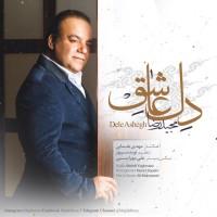 Majid-Reza-Dele-Ashegh