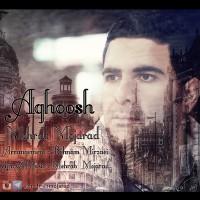 Mehrab-Mojarad-Aghoosh