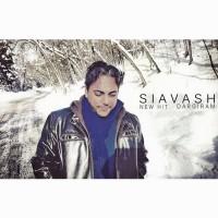 Siavash-Shams-Dargiram