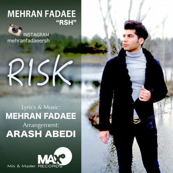 Mehran Fadaee - Risk
