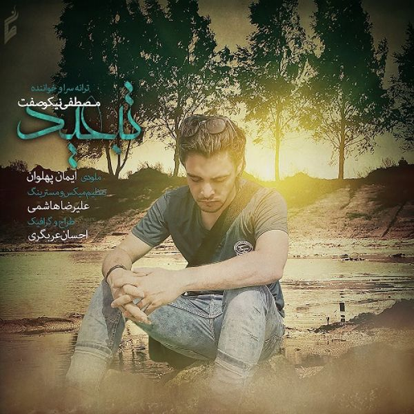 Mostafa Nikosefat - Tabeed