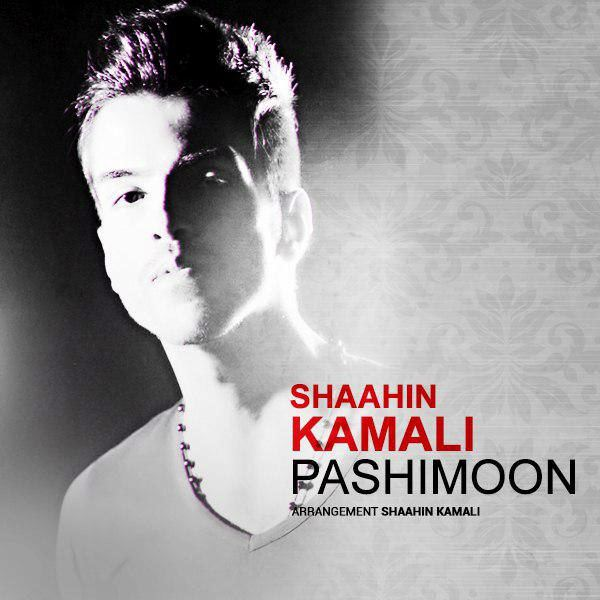 Shaahin Kamali - Khoda Bebakhshe (Live Version)