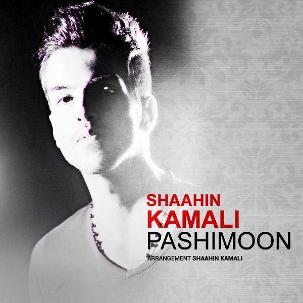 Shaahin Kamali - Pashimoon