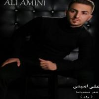 Ali-Amini-Raaz