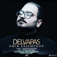 Amin-Kazempour-Delvapas