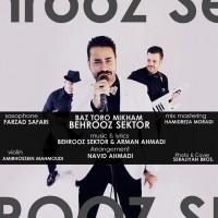 Behrooz-Sector-Toro-Mikham