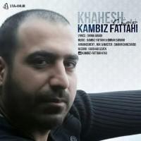 Kambiz-Fatahi-Khahesh