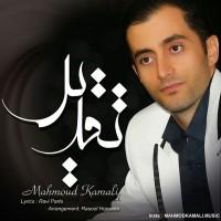Mahmoud-Kamali-Taghdir