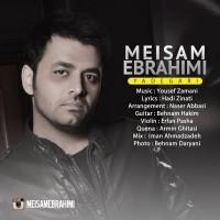 Meysam-Ebrahimi-Yadegari