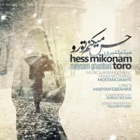 Meysam-Ghanbari-Hes-Mikonam-To-Ro