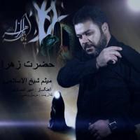 Meysam-Sheikholeslami-Hazrate-Zahra