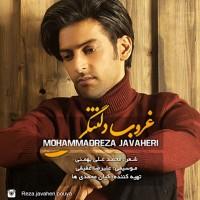 Mohammadreza-Javaheri-Ghoroube-Deltangi