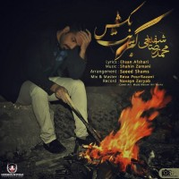 Mohammadreza-Shafie-Kebrit-Bekesh