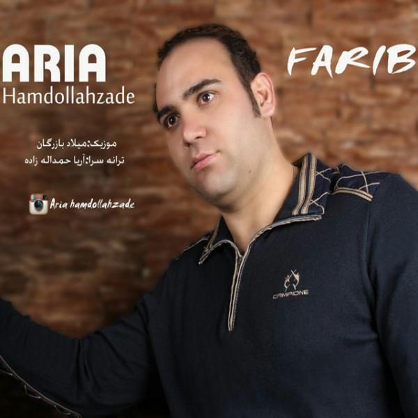 Aria Hamdollahzadeh - Farib
