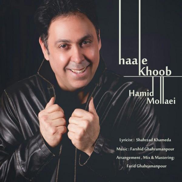 Hamid Molaei - Haale Khoob