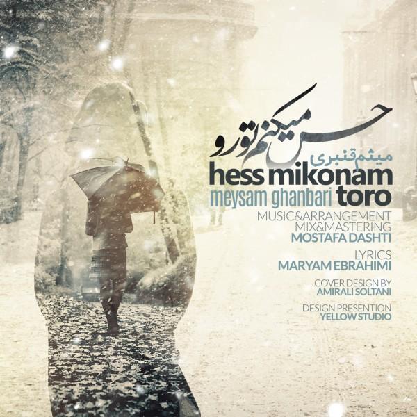 Meysam Ghanbari - Hes Mikonam To Ro