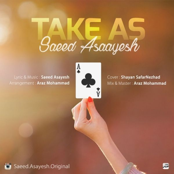 Saeed Asayesh - Take As