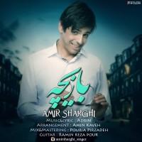 Amir-Sharghi-Bazicheh