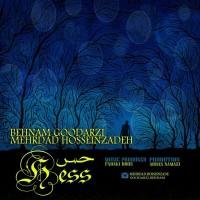 Behnam-Goodarzi-Mehrdad-Hosseinzadeh-Hess