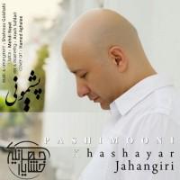 Khashayar-Jahangiri-Pashimooni