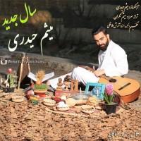 Meisam-Heidari-Sale-Jadid