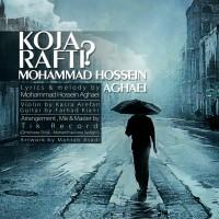 Mohammad-Hossein-Aghaei-Koja-Rafti