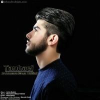 Mohammadreza-Hakimi-Tanhaei