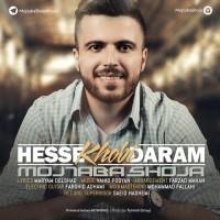 Mojtaba-Shoja-Hesse-Khoobi-Daram