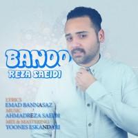Reza-Saeidi-Banoo