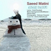Saeed-Matini-Adam-Barfi