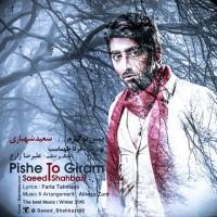 Saeed-Shahbazi-Pishe-To-Giram