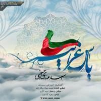 Seyed-Mahdi-Heseini-Yase-Gharib