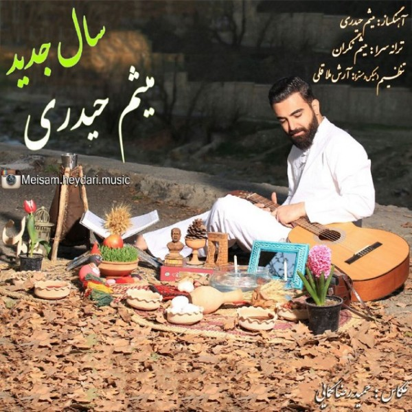 Meisam Heidari - Sale Jadid