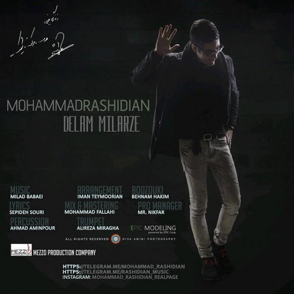 Mohammad Rashidian - Delam Milarze
