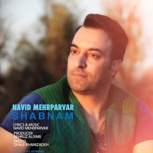 Navid Mehrparvar - Shabnam