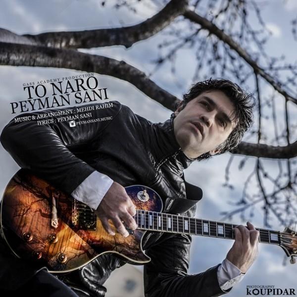 Peyman Sani - To Naro