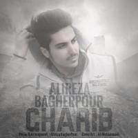 Alireza-Bagherpour-Gharib