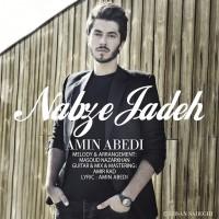 Amin-Abedi-Nabze-Jaddeh