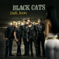 Black-Cats-Dafi-Joon