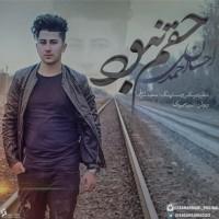 Ehsan-Ahmadi-Hagham-Nabood