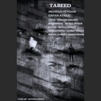 Erfan-Ataaei-Mehrad-Heydari-Tabeed