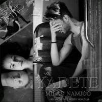 Milad-Namjoo-Yadete