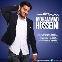Mohammad-Hosseini-Pa-Pas-Nemikesham