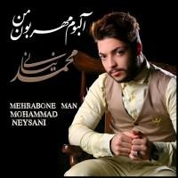 Mohammad-Neysani-Liaghatt-Hamone