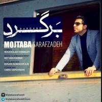 Mojtaba-Sarafzadeh-Bargard